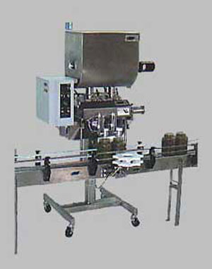 Piston Filler Model DVS